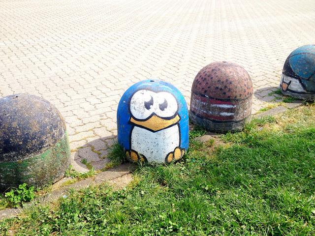 pinguino-pao